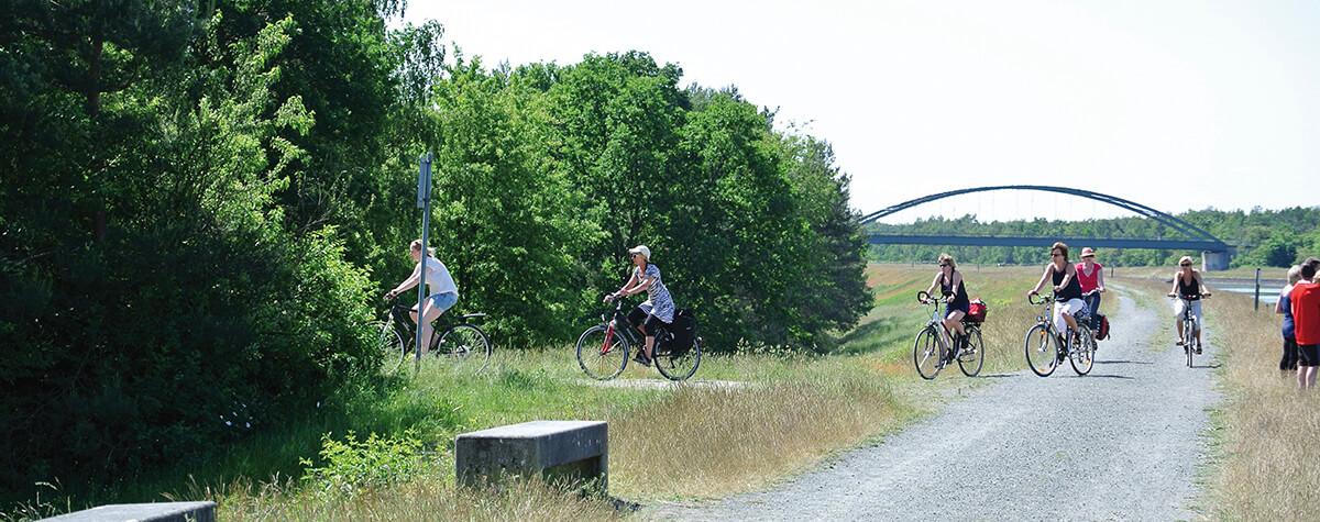 Radfahrer biegen vom Elbe-Seitenkanal ab zum Bernsteinsee